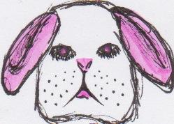 bunnies 17